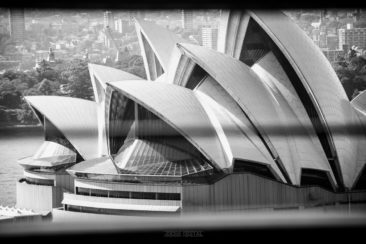 Sydney - Joose Digital Photography